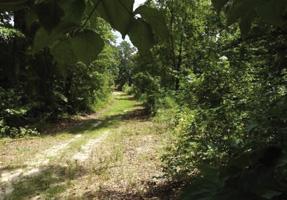 Barrington Farms Of Aiken Sc